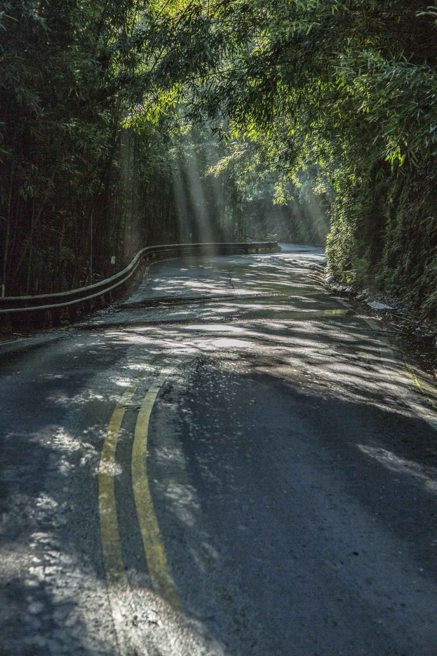 road to hana - HD 1500×2250
